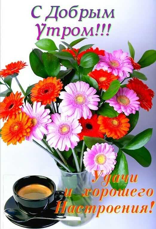 На фото цветы